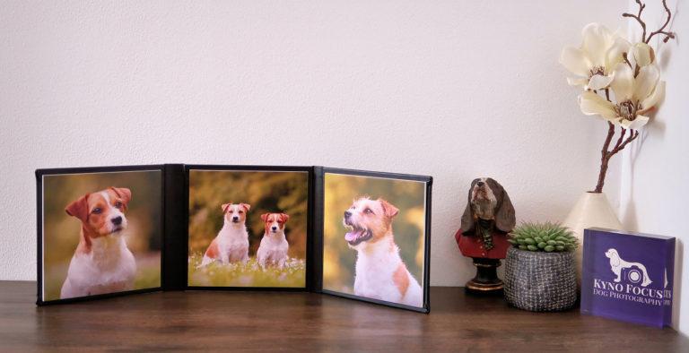 Hondenfotograaf Kyno Focus
